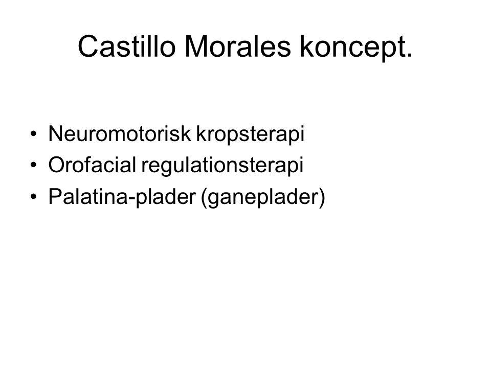Castillo Morales koncept.