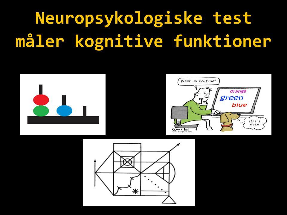 Neuropsykologiske test måler kognitive funktioner