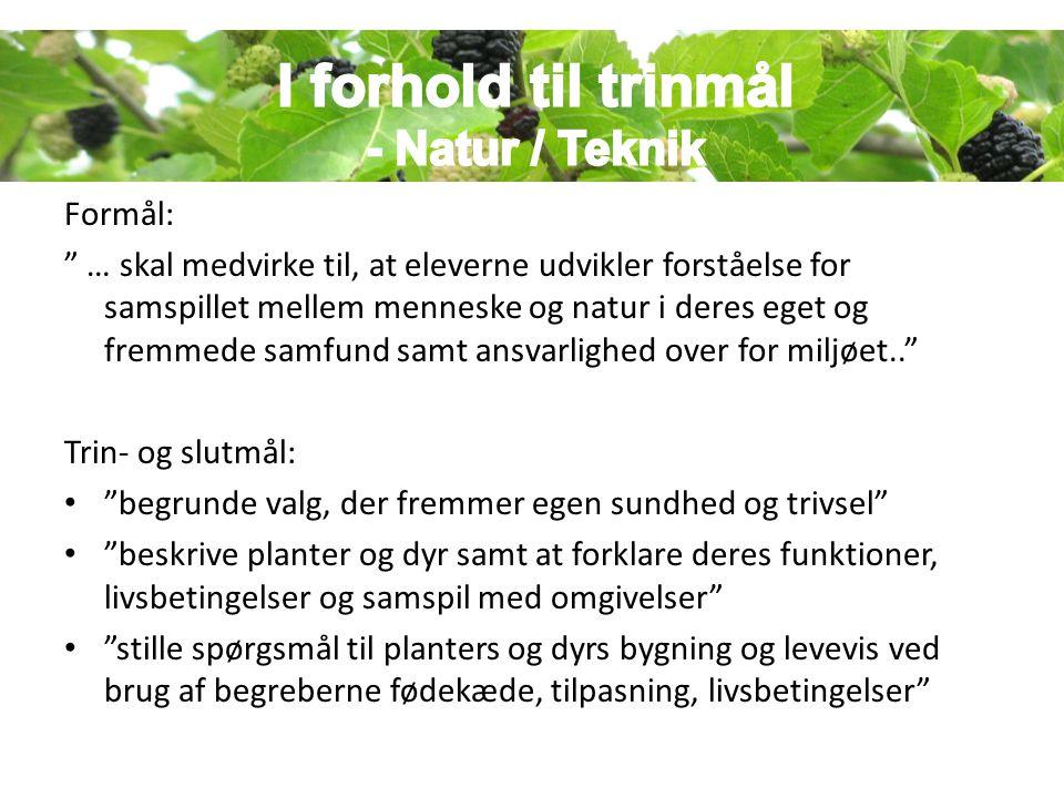 I forhold til trinmål - Natur / Teknik Formål: