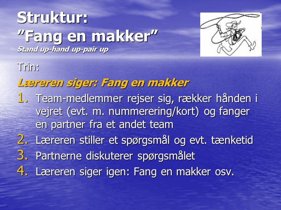 Struktur: Fang en makker Stand up-hand up-pair up