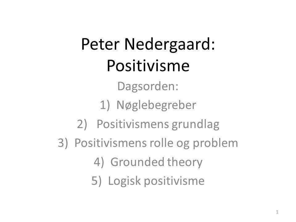 Peter Nedergaard: Positivisme