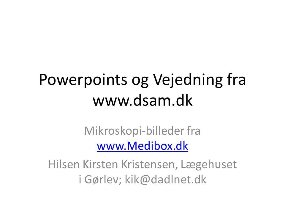 Powerpoints og Vejedning fra www.dsam.dk