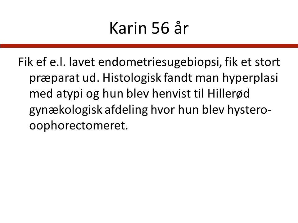 Karin 56 år