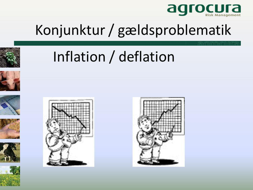 Konjunktur / gældsproblematik