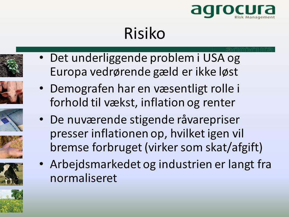 Risiko Det underliggende problem i USA og Europa vedrørende gæld er ikke løst.