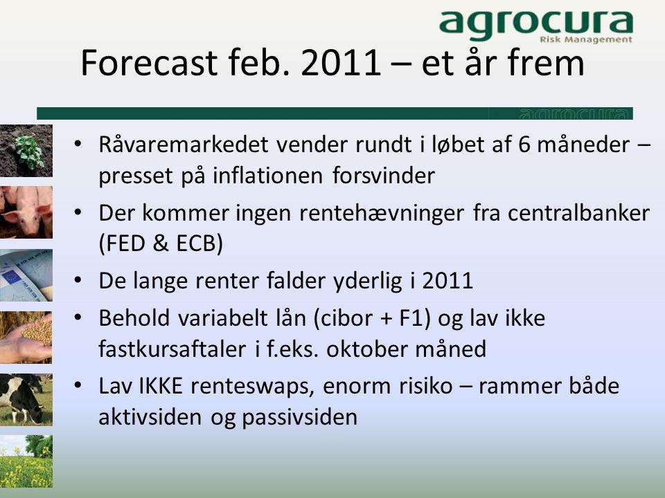 Forecast feb. 2011 – et år frem