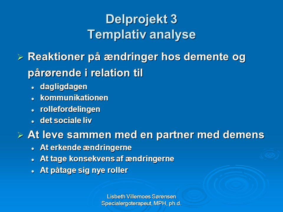Delprojekt 3 Templativ analyse