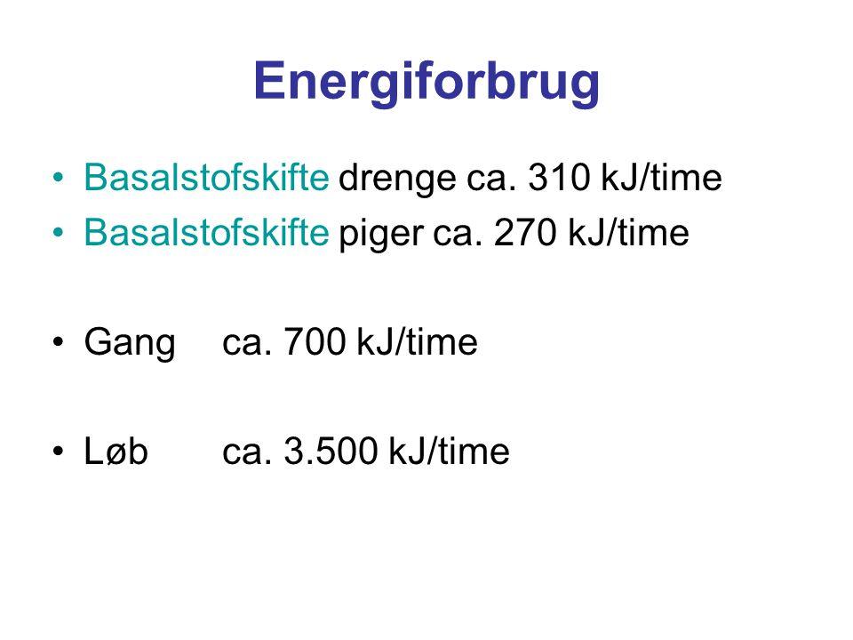 Energiforbrug Basalstofskifte drenge ca. 310 kJ/time