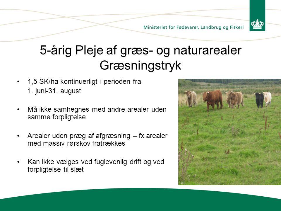 5-årig Pleje af græs- og naturarealer Græsningstryk