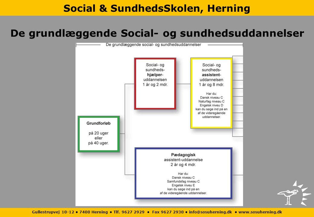 De grundlæggende Social- og sundhedsuddannelser