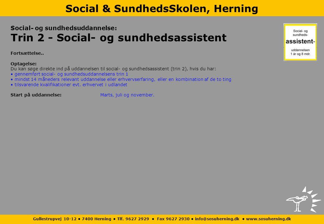 Social- og sundhedsuddannelse: Trin 2 - Social- og sundhedsassistent