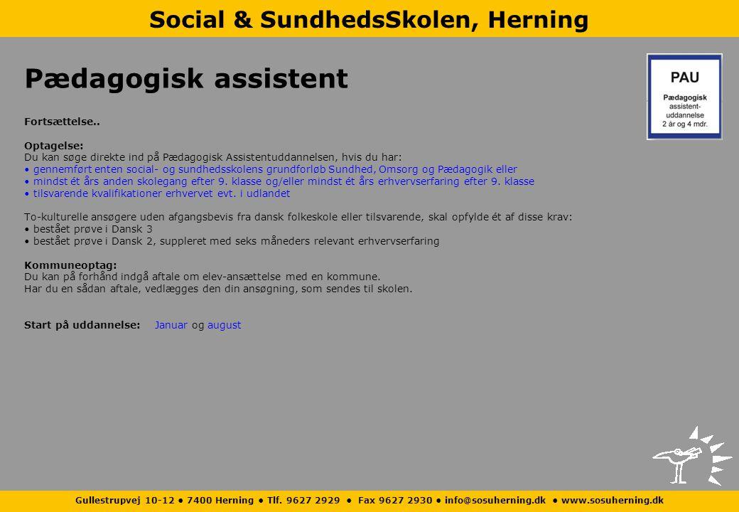 Social & SundhedsSkolen, Herning