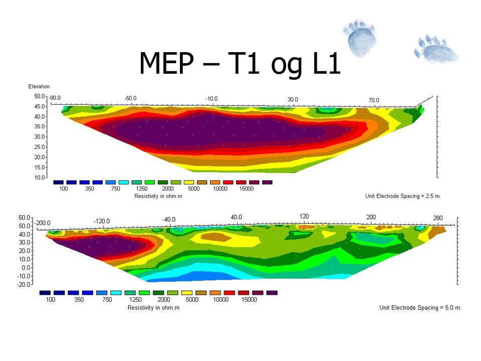 MEP – T1 og L1