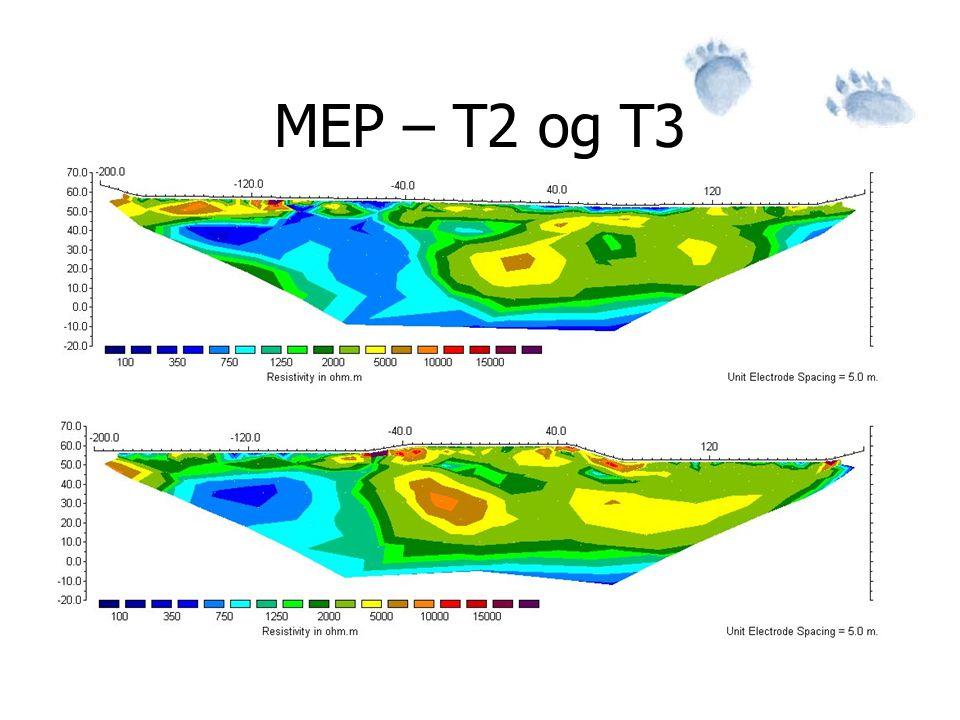 MEP – T2 og T3