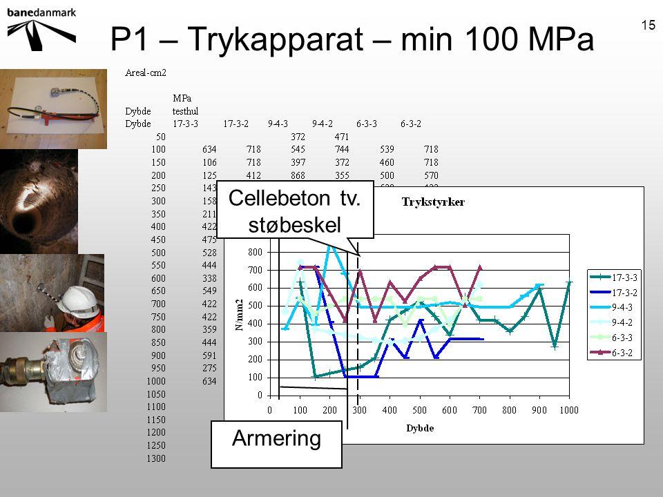 P1 – Trykapparat – min 100 MPa