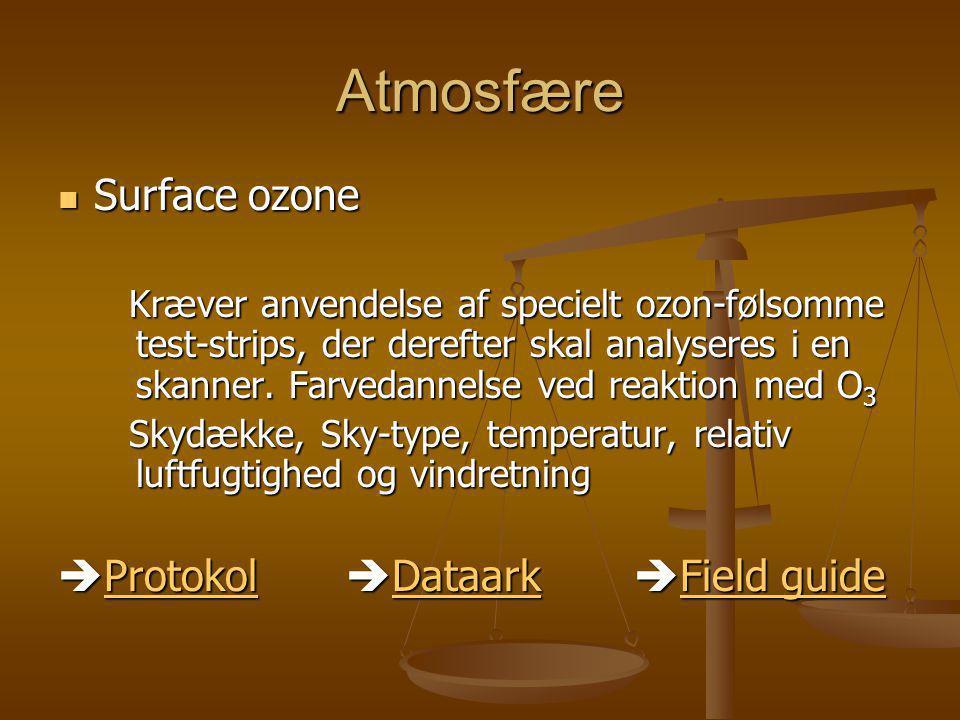 Atmosfære Surface ozone Protokol Dataark Field guide