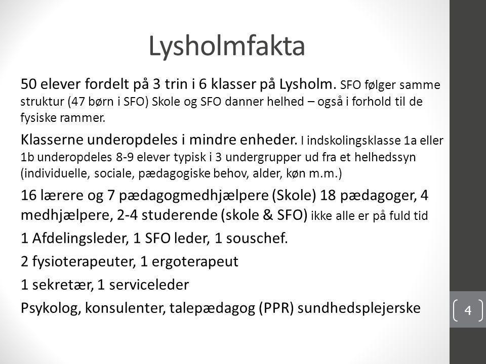 Lysholmfakta