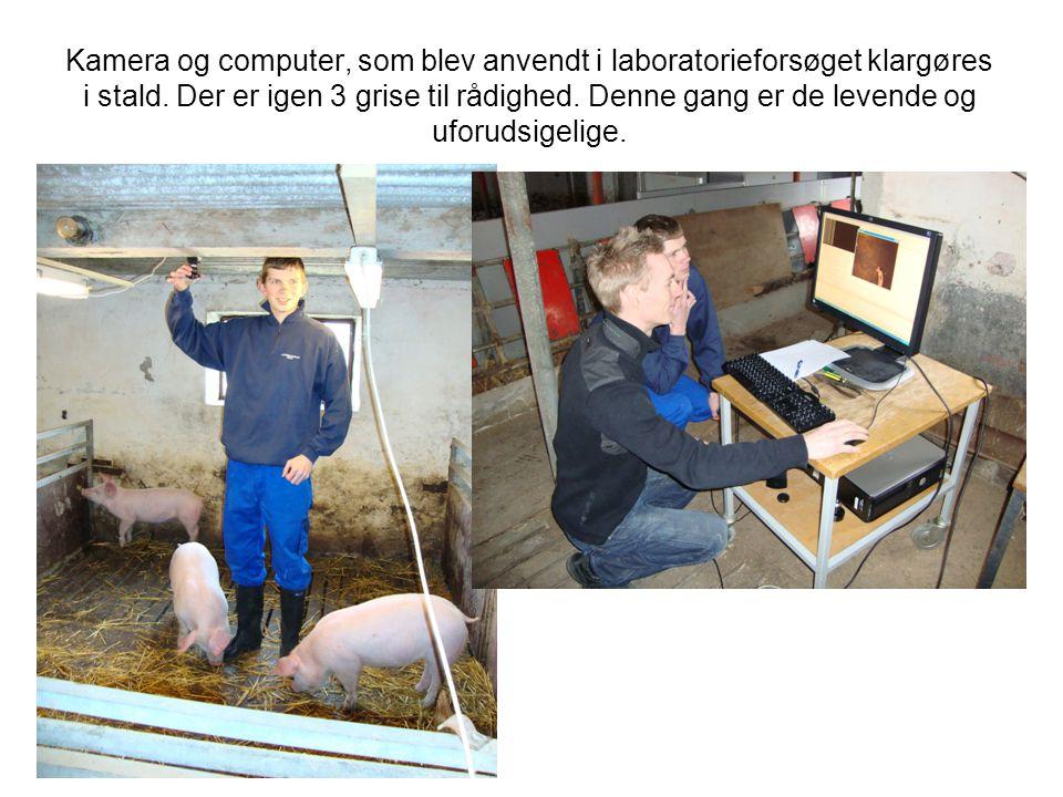 Kamera og computer, som blev anvendt i laboratorieforsøget klargøres i stald.
