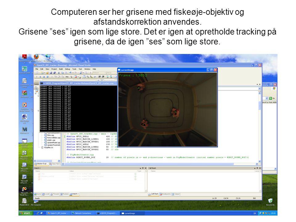 Computeren ser her grisene med fiskeøje-objektiv og afstandskorrektion anvendes.