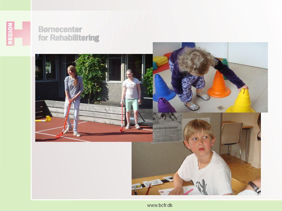 www.bcfr.dk