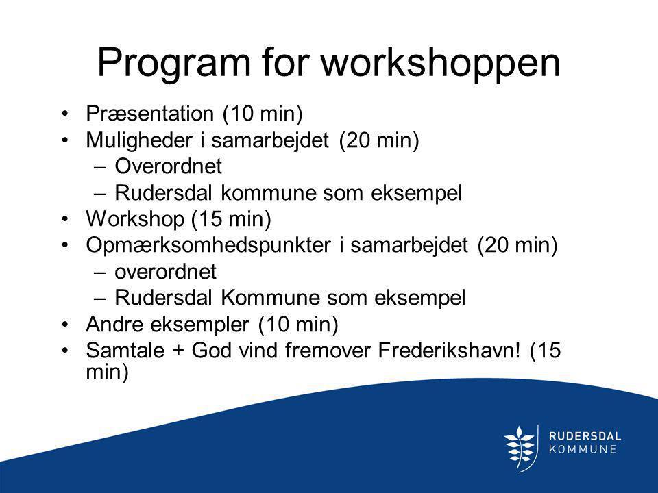 Program for workshoppen