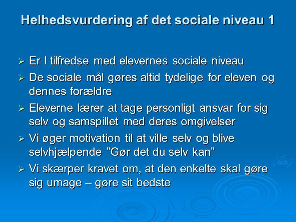 Helhedsvurdering af det sociale niveau 1
