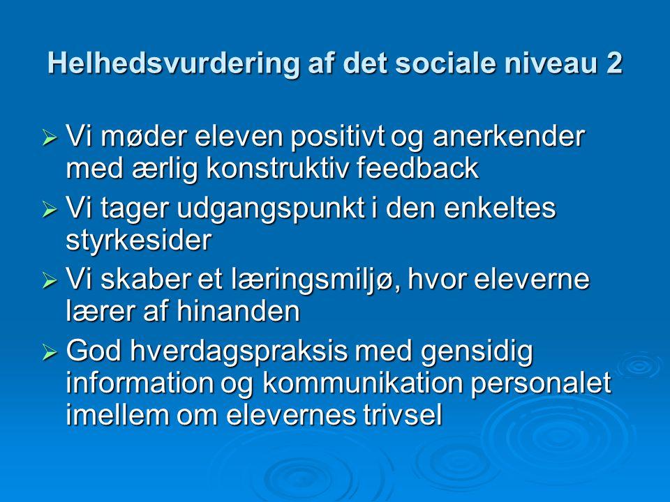 Helhedsvurdering af det sociale niveau 2