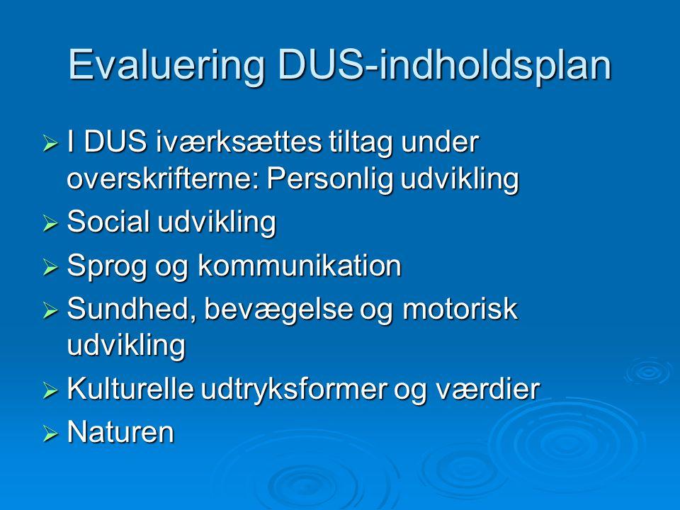 Evaluering DUS-indholdsplan