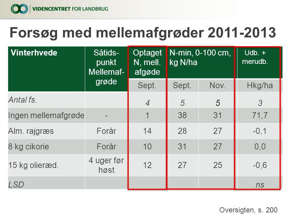 Forsøg med mellemafgrøder 2011-2013
