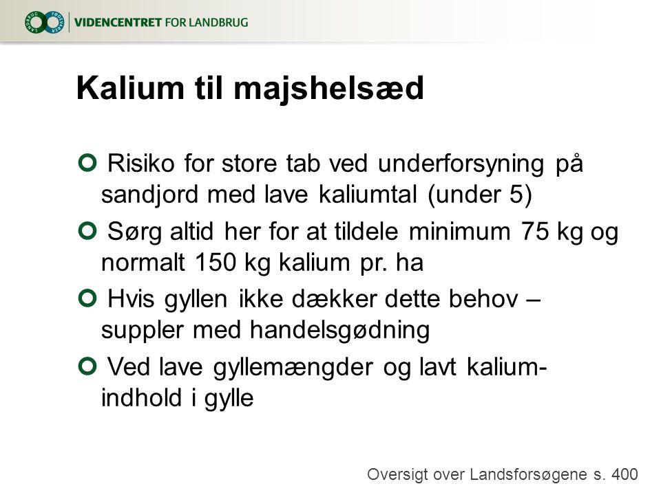 Kalium til majshelsæd Risiko for store tab ved underforsyning på sandjord med lave kaliumtal (under 5)