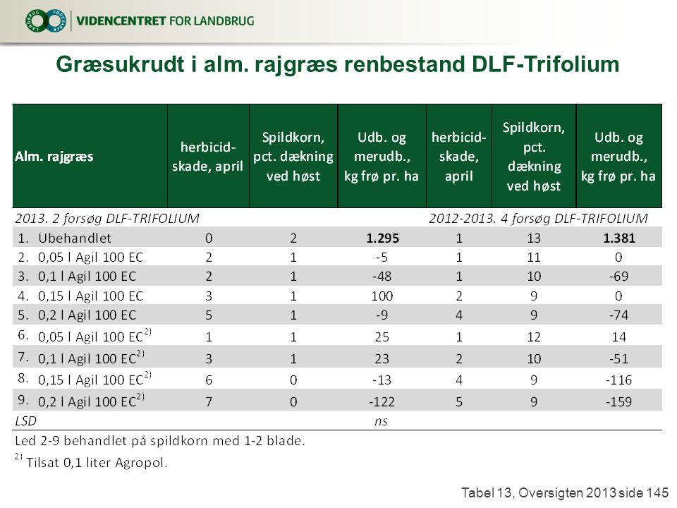 Græsukrudt i alm. rajgræs renbestand DLF-Trifolium