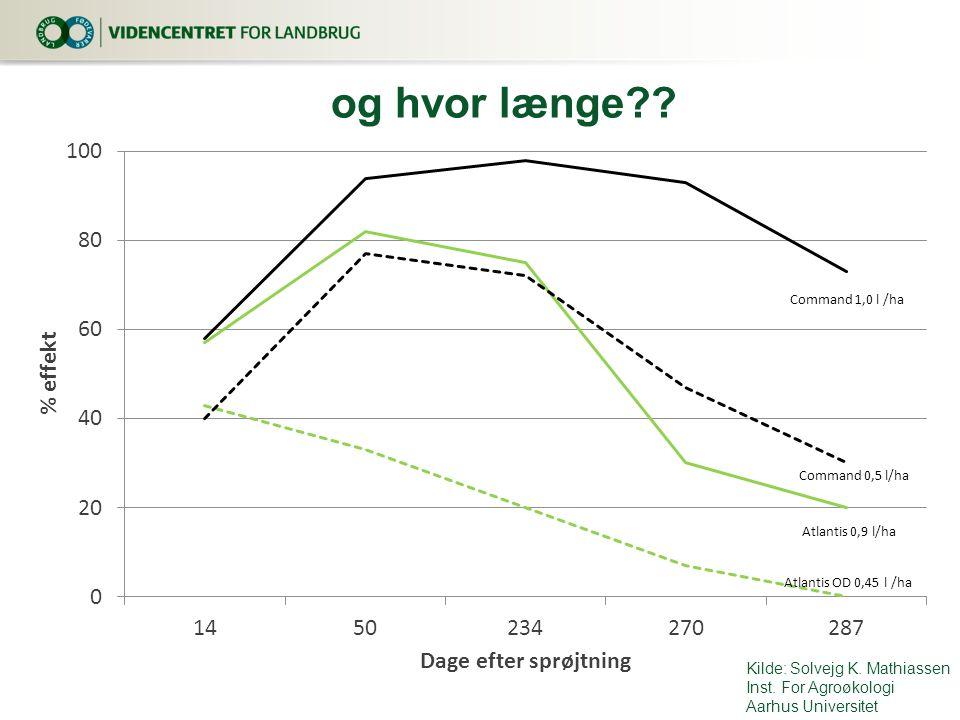 og hvor længe Kilde: Solvejg K. Mathiassen Inst. For Agroøkologi