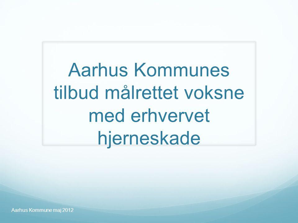 Aarhus Kommunes tilbud målrettet voksne med erhvervet hjerneskade