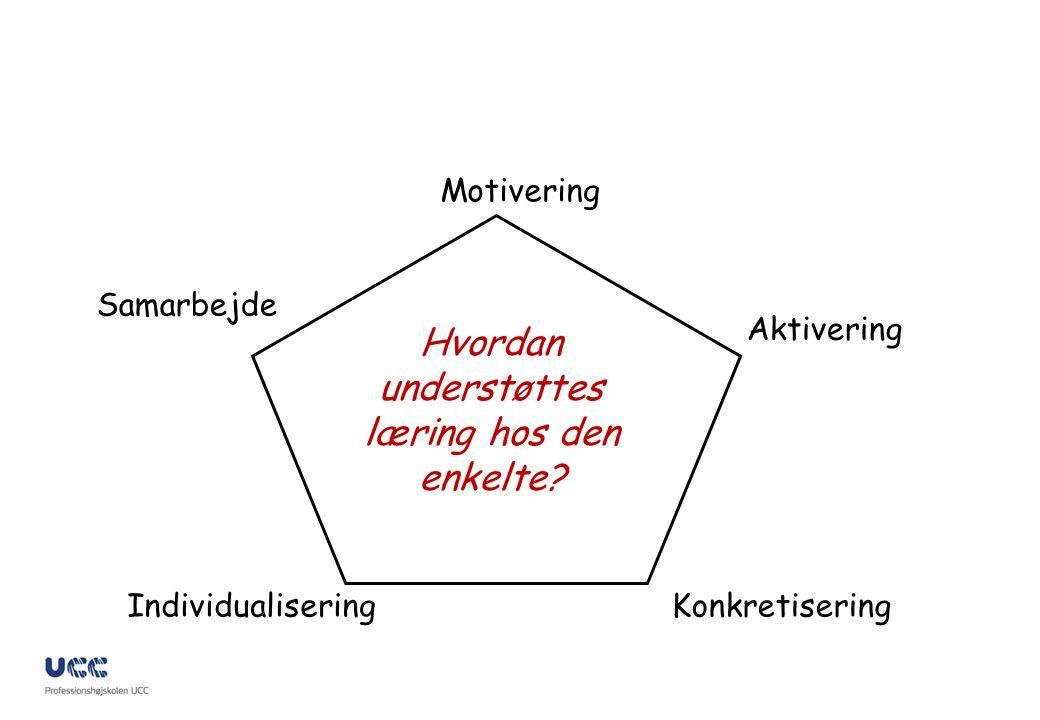 Hvordan understøttes læring hos den enkelte