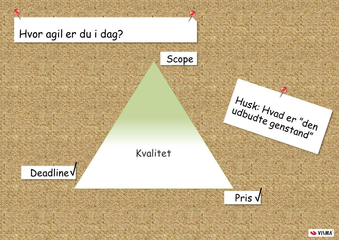 √ √ Hvor agil er du i dag Scope Husk: Hvad er den udbudte genstand