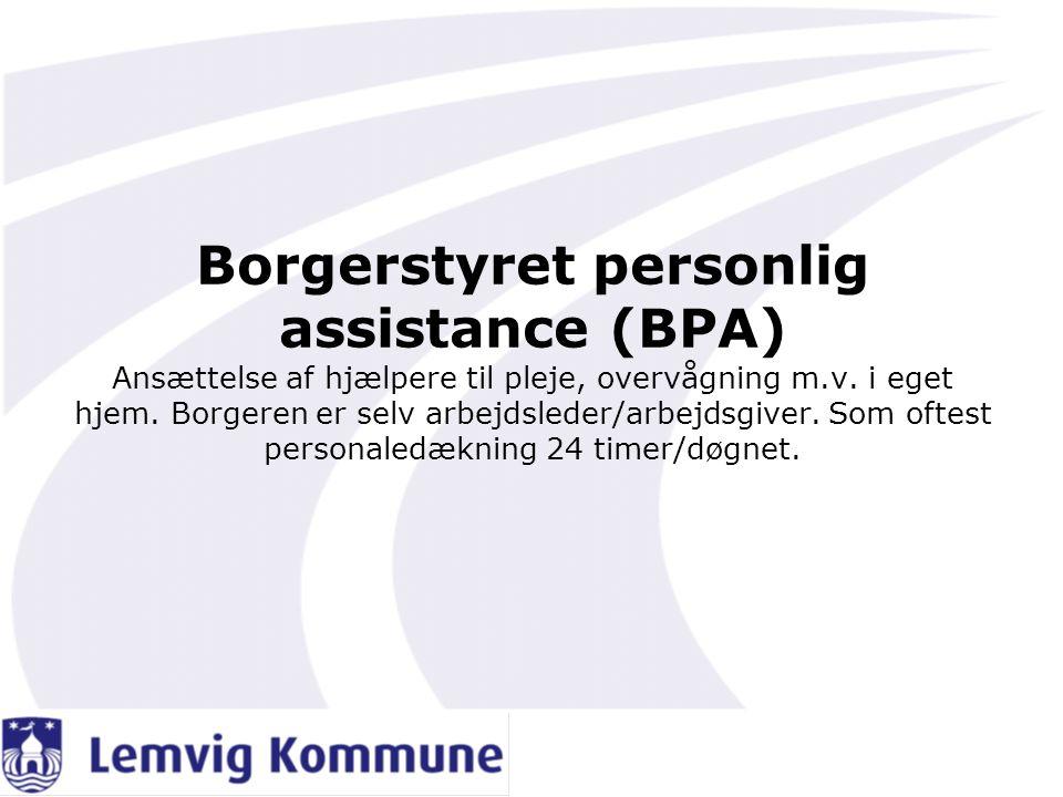 Borgerstyret personlig assistance (BPA) Ansættelse af hjælpere til pleje, overvågning m.v.