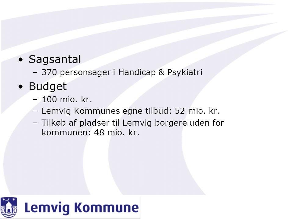 Sagsantal Budget 370 personsager i Handicap & Psykiatri 100 mio. kr.