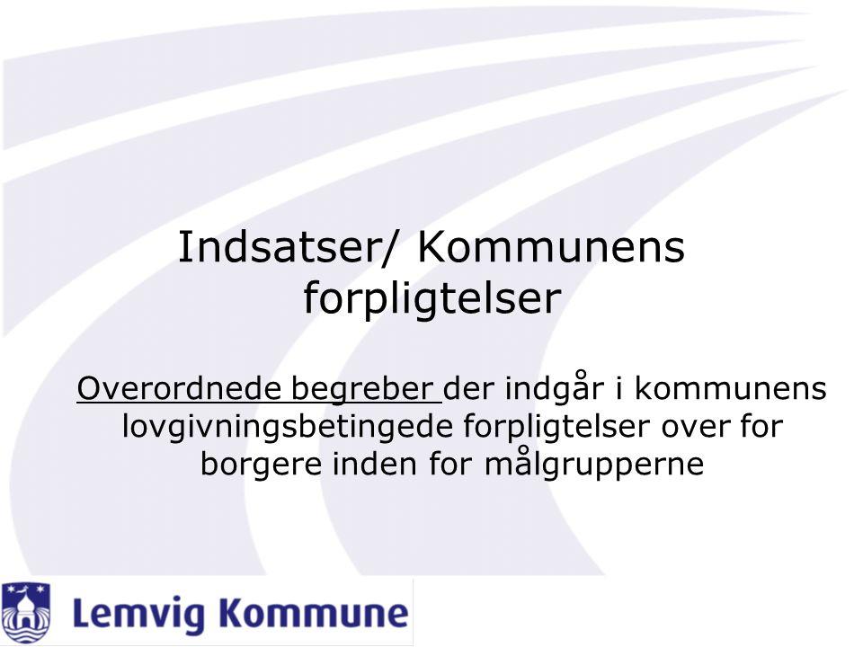 Indsatser/ Kommunens forpligtelser