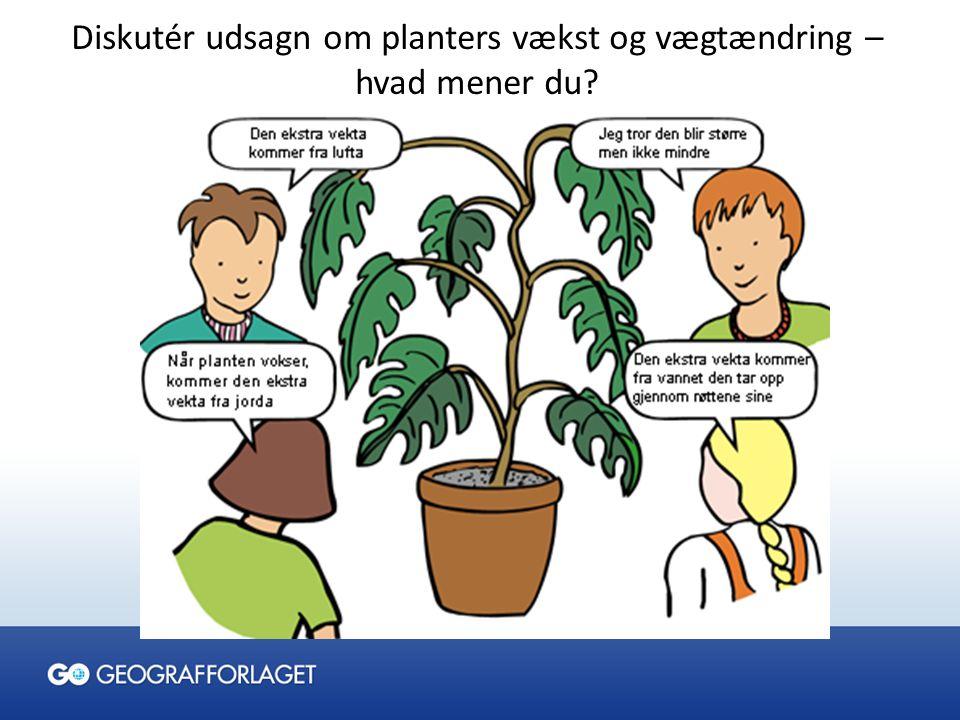 Diskutér udsagn om planters vækst og vægtændring – hvad mener du