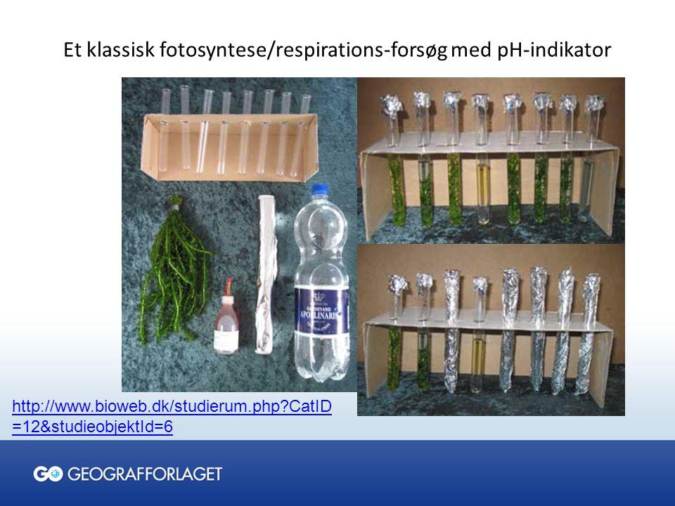 Et klassisk fotosyntese/respirations-forsøg med pH-indikator
