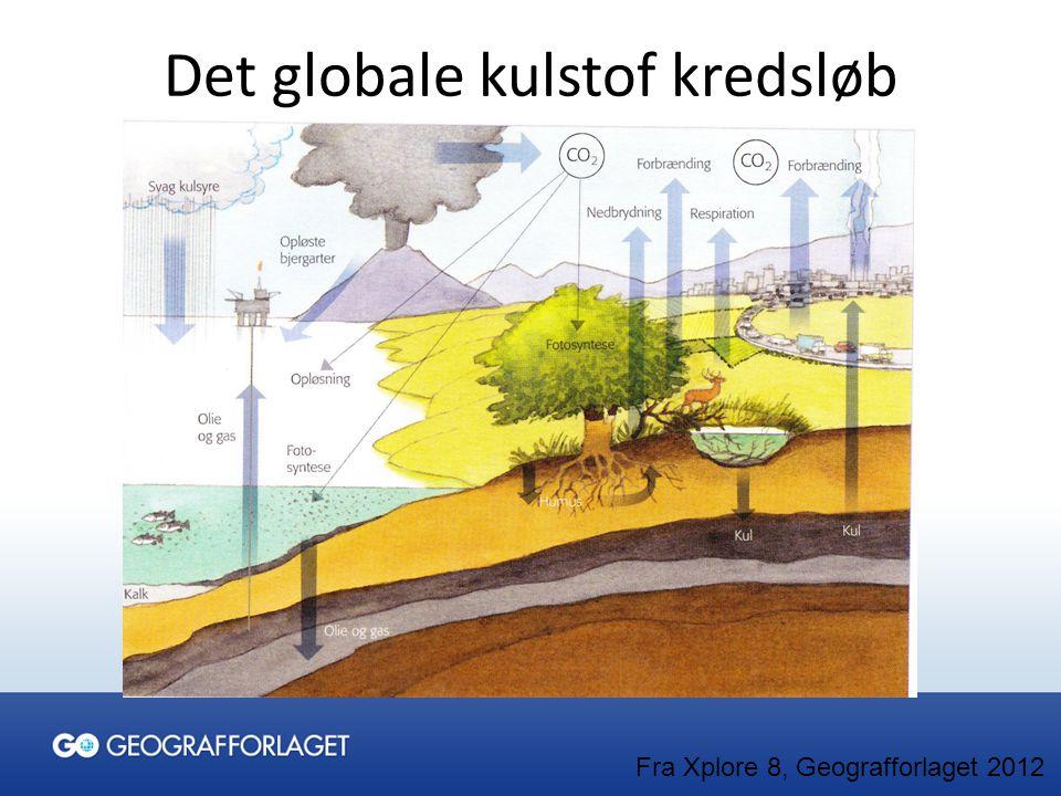 Det globale kulstof kredsløb