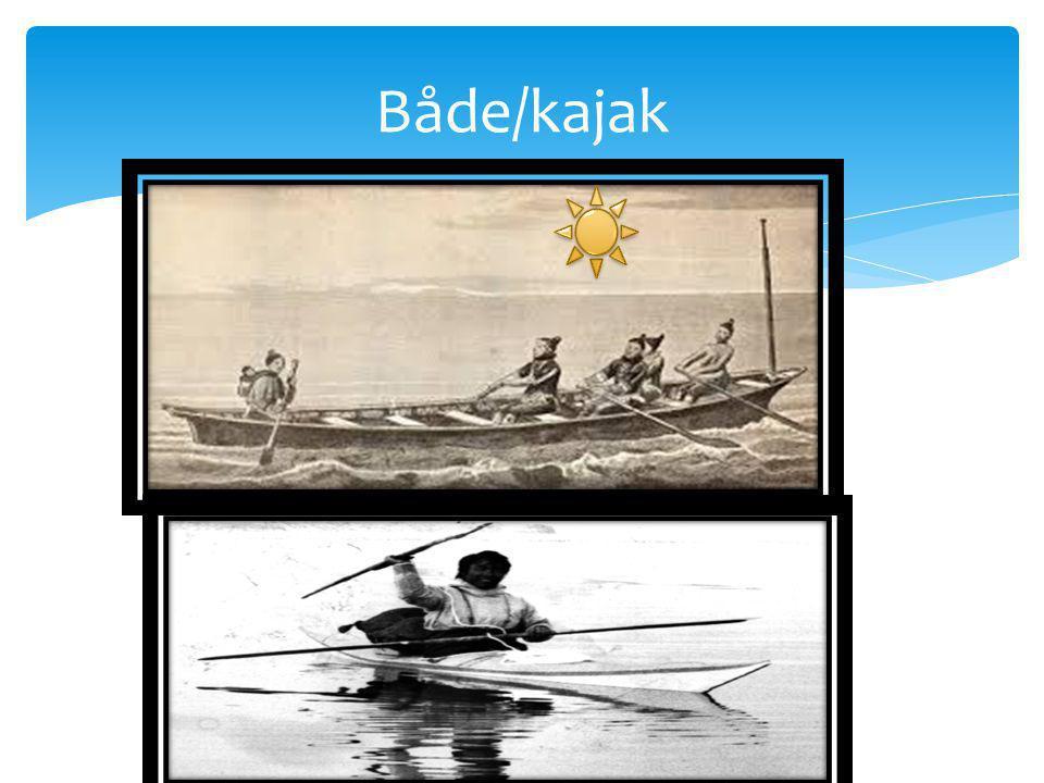 Både/kajak