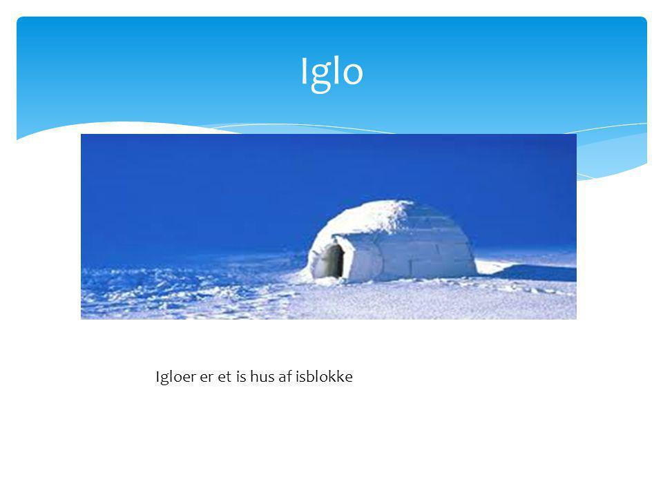 Iglo Igloer er et is hus af isblokke