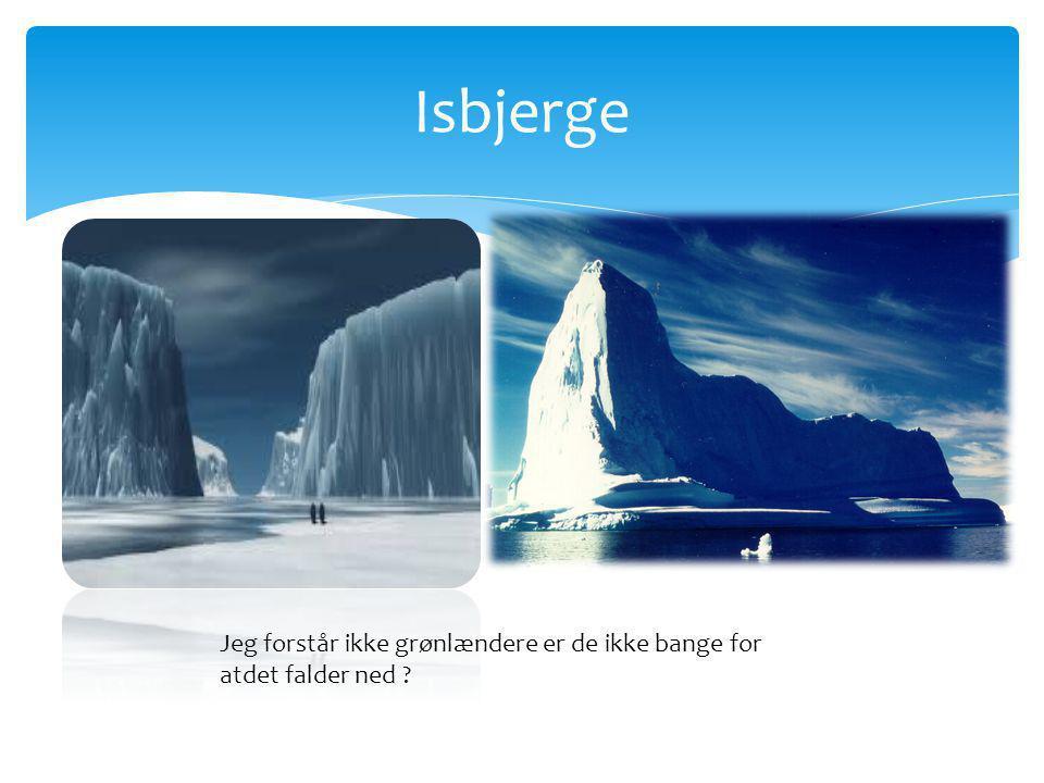 Isbjerge Jeg forstår ikke grønlændere er de ikke bange for atdet falder ned
