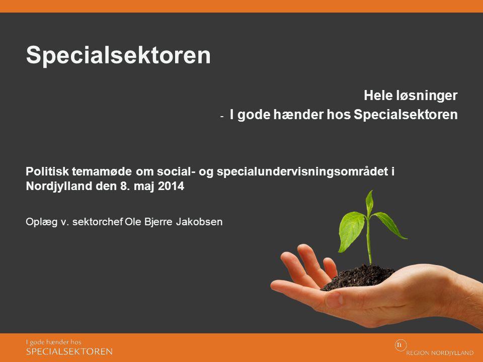 Specialsektoren Hele løsninger I gode hænder hos Specialsektoren