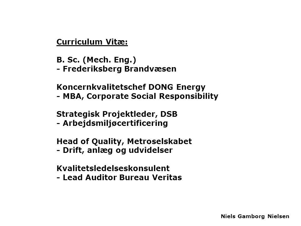 Curriculum Vitæ: B. Sc. (Mech. Eng.) - Frederiksberg Brandvæsen. Koncernkvalitetschef DONG Energy.