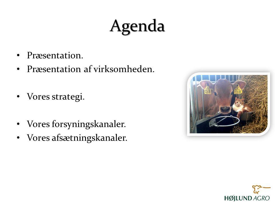 Agenda Præsentation. Præsentation af virksomheden. Vores strategi.