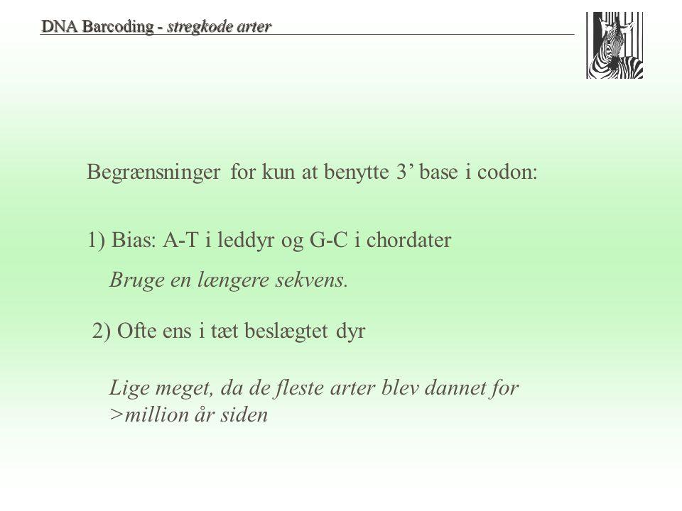 Begrænsninger for kun at benytte 3' base i codon: