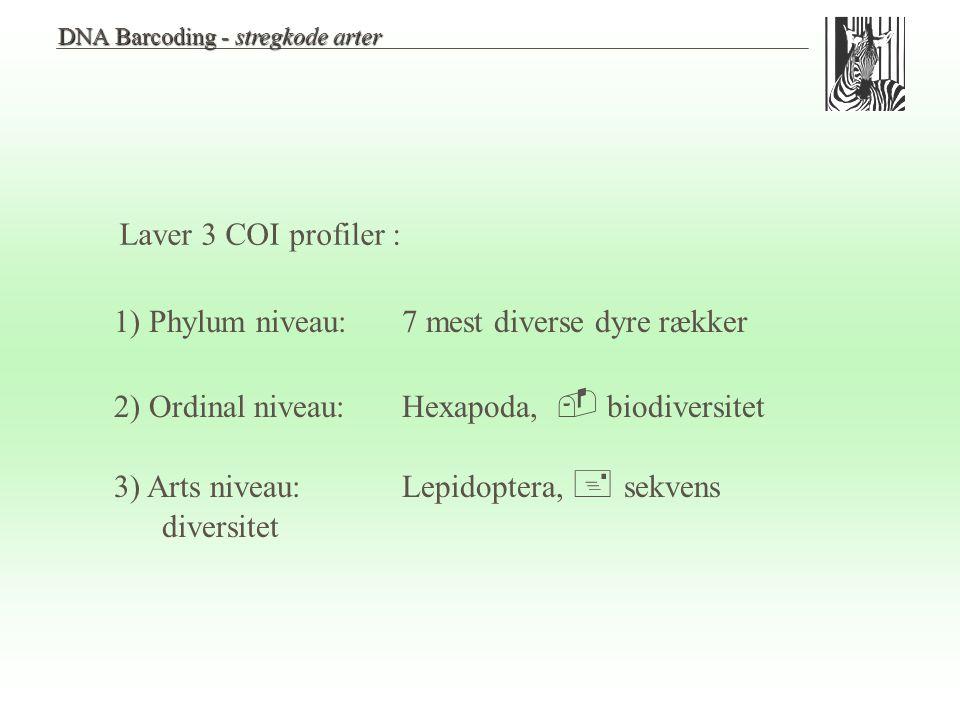 1) Phylum niveau: 7 mest diverse dyre rækker