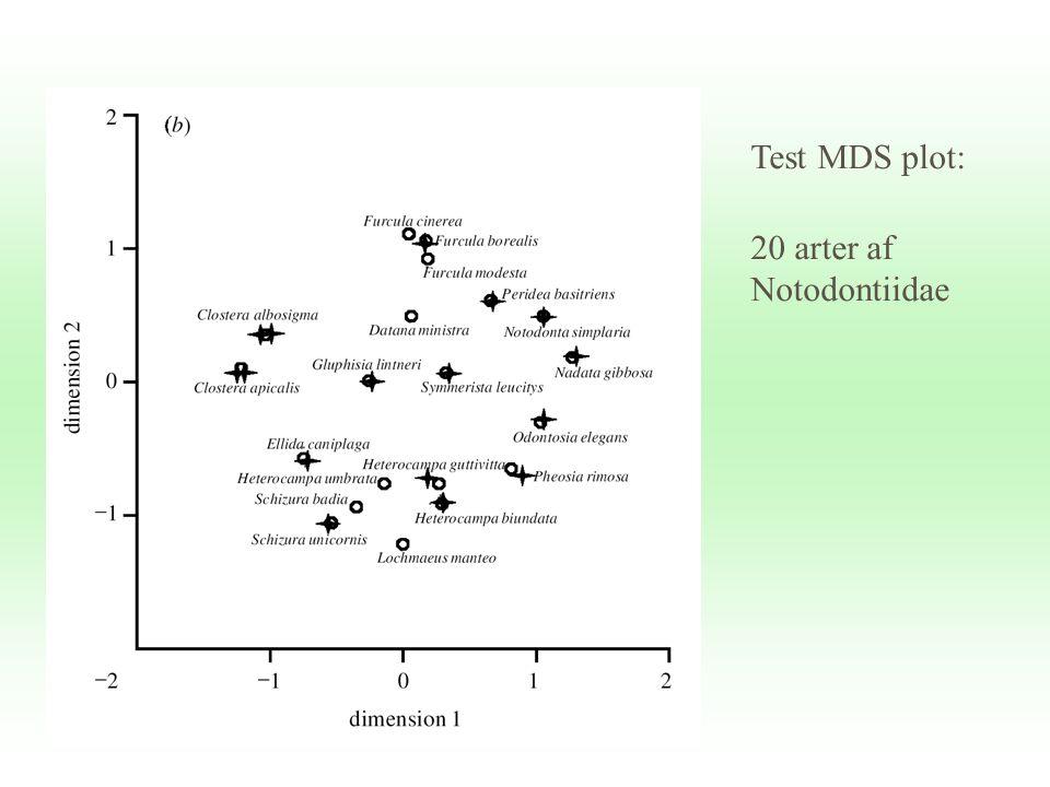 Test MDS plot: 20 arter af Notodontiidae